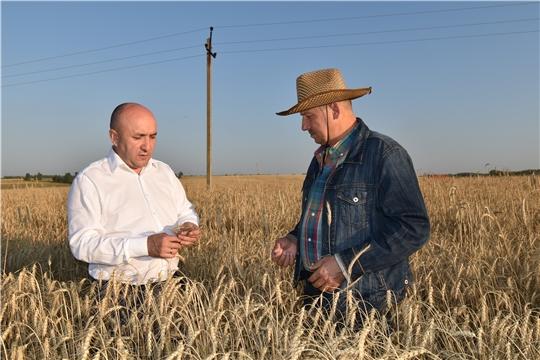 Сергей Артамонов встретился с аграриями Канашского района и ознакомился с ходом уборки урожая в Цивильском районе