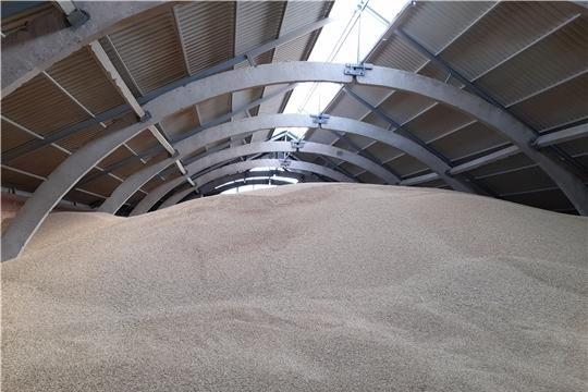 На 14 августа в республике намолочено 319 тыс. тонн зерна
