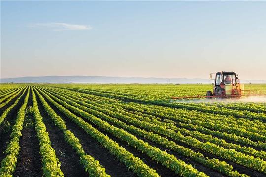 В 2020 году Россия может подняться на шестое место в мире по объему рынка пестицидов – эксперты «Августа»