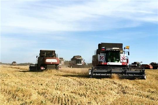 В хозяйствах республики намолочено более 700 тыс. тонн зерна