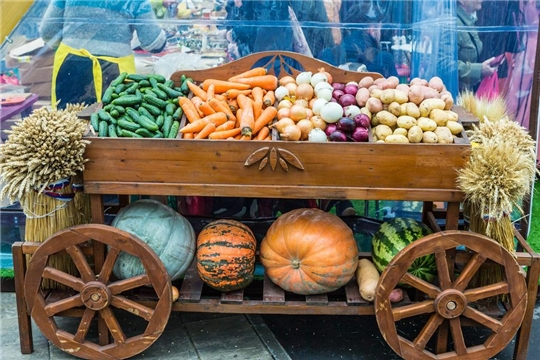 Минсельхоз РФ видит потенциал онлайн-торговли для сбыта фермерской продукции