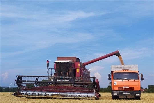 14 хозяйств Красноармейского района завершили уборку зерновых