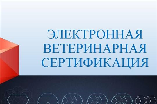 «Меркурий» повысил прозрачность продрынка, к 1 сентября оформлено 2,7 млрд ветсертификатов - Патрушев