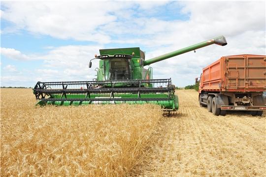 Валовой сбор зерна в республике превысил показатель прошлого года