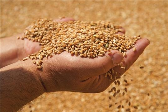 Зерно получит межгосударственный стандарт
