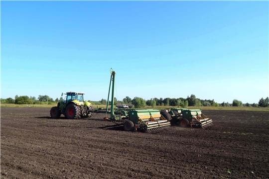Под урожай 2021 года посеяно 68,6 тыс. га зерновых культур