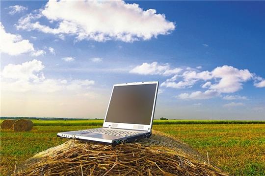 Минсельхоз Чувашии разработает цифровую платформу для продвижения местной продукции