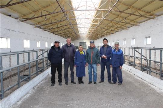 В СХПК «Комбайн» Яльчикского района прошел смотр готовности животноводческих ферм к зимовке скота