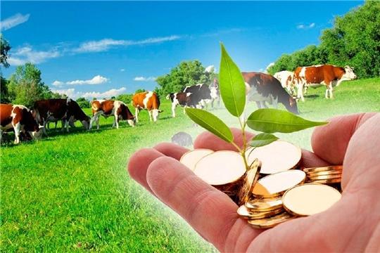 Результаты грантовой господдержки фермерства