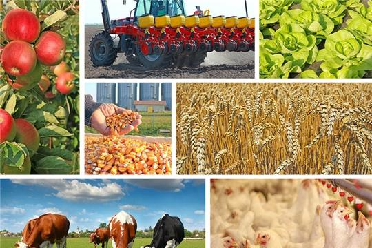 Девять организаций Чувашской Республики вошли в реестр предприятий малых форм хозяйствования Российской Федерации, готовых поставлять продукцию в торговые сети
