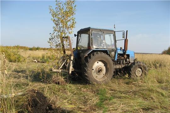 Освоение залежных земель в Ибресинском районе