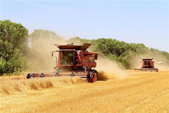 Кабмин РФ обсудил предварительные итоги уборки урожая в 2020 году