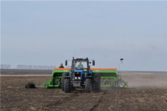 Посев озимых зерновых культур в Чувашии превысил показатели прошлого года