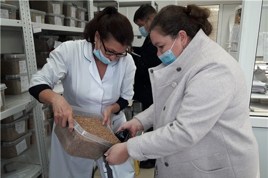 Cовместная работа способствует повышению качества и безопасности поступающего в республику зерна