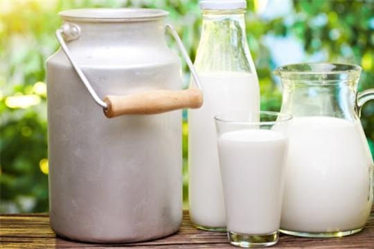 Сельхозпредприятия РФ к 5 октября увеличили реализацию молока на 5%