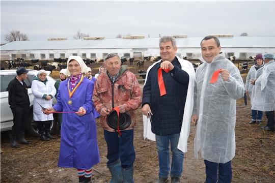 В агрофирме «Кубнинский» состоялось открытие телятника на 120 голов