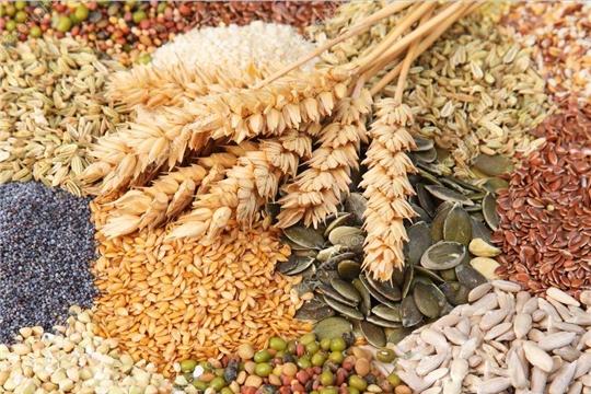 В сельскохозяйственных организациях республики семена яровых зерновых и зернобобовых культур засыпаны в объеме  96% от потребности