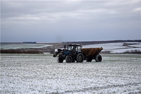 В ООО «Митра» Алатырского района продолжают подкормку озимой пшеницы