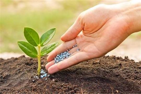 Объемы приобретения минеральных удобрений в текущем году значительно превышают показатели прошлого года
