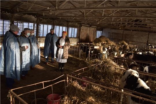 Министр сельского хозяйства ЧР Сергей Артамонов посетил с рабочим визитом АО «Приволжское»