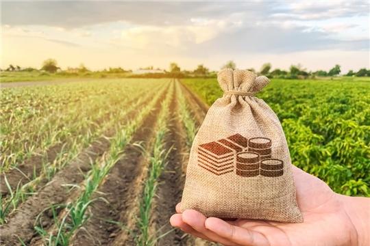 Зарплата в сельском хозяйстве Чувашской Республики выросла на 16,8%