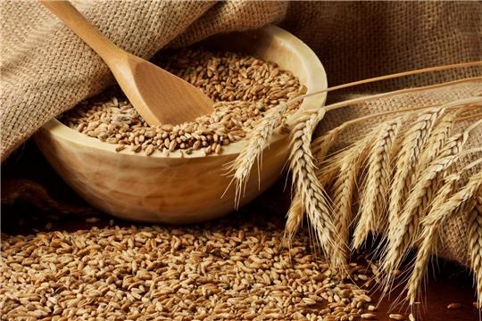 Проверены семена яровых зерновых и зернобобовых культур в объеме 41,1 тыс. тонн
