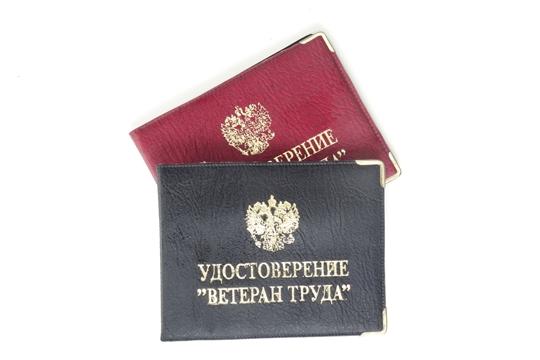 В феврале 2020 года ветеранам труда в Чувашской Республике предоставлена социальная поддержка  на сумму более 143 млн рублей