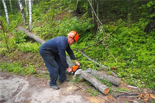Работники чебоксарского предприятия организовали экологический субботник