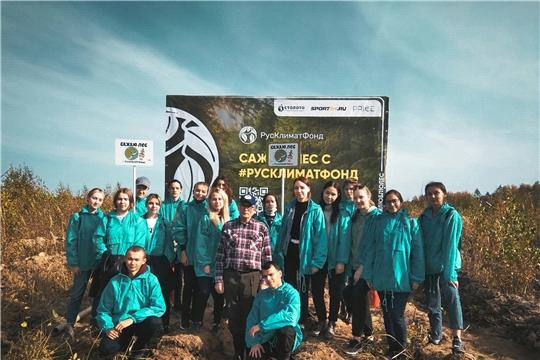 В Заволжье состоялась Всероссийская акция «Сохраним лес»