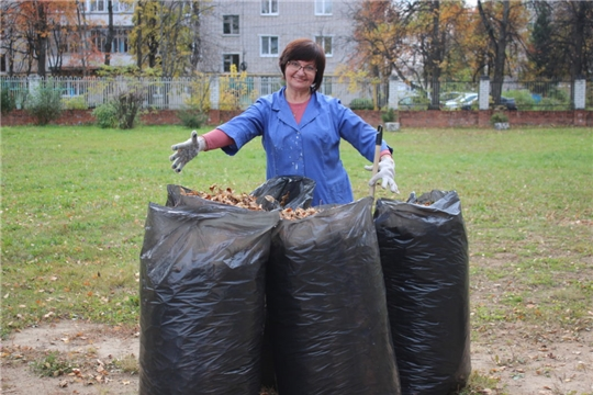 К осеннему санитарно-экологическому месячнику присоединяются трудовые коллективы