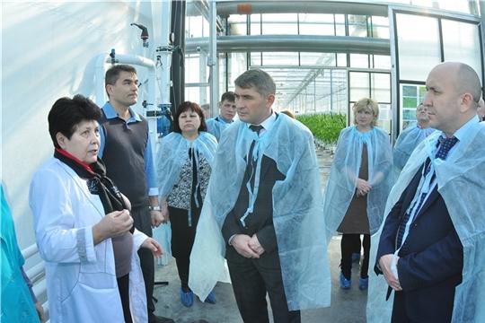 Врио Главы Чувашии Олег Николаев пообещал поддержку предприятиям отрасли тепличного овощеводства