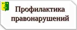 Комиссия по профилактике правонарушений в Шемуршинском районе