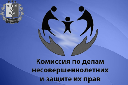 Итоги деятельности комиссии по делам несовершеннолетних и защите их прав при администрации Шемуршинского района за 2019 год