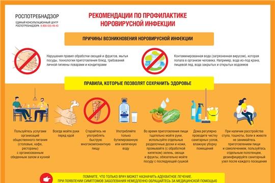 О рекомендациях по профилактике норовирусной инфекции