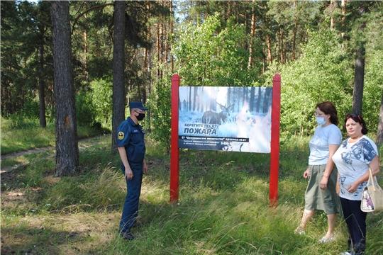 Оперативная группа провела выездное обследование лесных участков  БУ «Трёхбалтаевское лесничество» Минприроды Чувашии