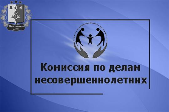 Плановое заседание комиссии по делам несовершеннолетних и защите их прав администрации Шемуршинского района