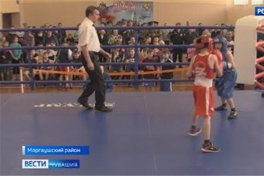В Чувашии стартовал открытый турнир по боксу, посвященный памяти воинов-интернационалистов