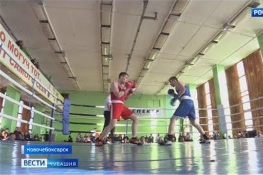 В Чувашии определились победители чемпионата и первенства республики по боксу