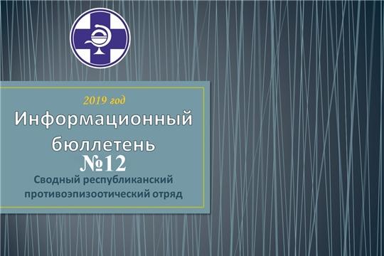 Информационный бюллетень № 12