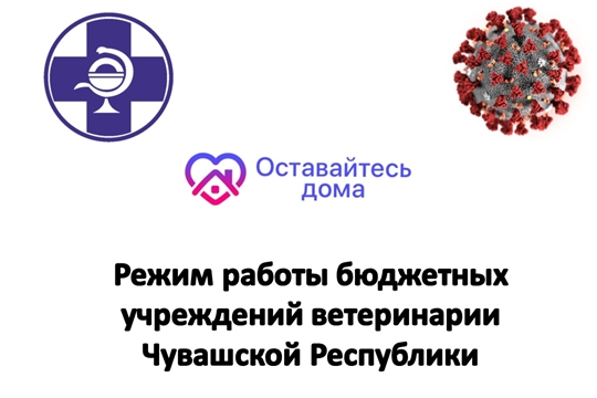 О работе бюджетных учреждений ветеринарии Чувашской Республики с 31 марта 2020 года