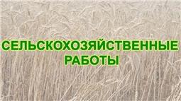 Сельскохозяйственные работы - 2020