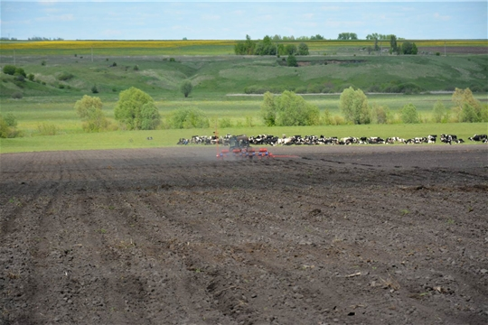 Глава администрации Вурнарского района ознакомился с ходом весенне-полевых работ