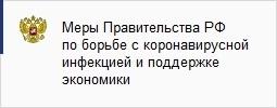 Меры Правительства РФ по борьбе с коронавирусной инфекцией и поддержке экономики