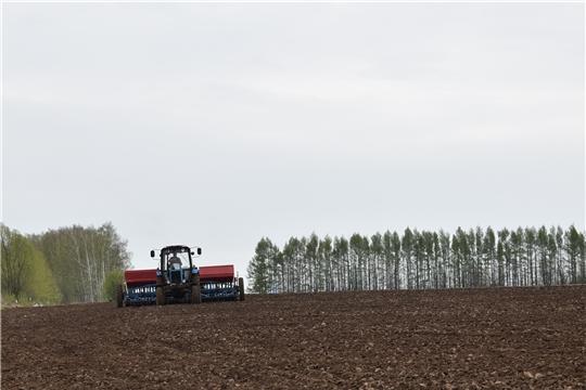 В Ядринском районе продолжаются весенне-полевые работы и строится солодовня