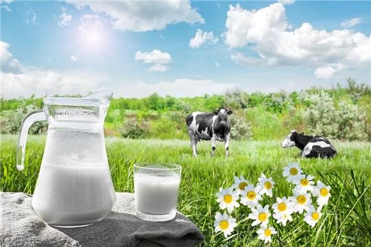 Лето — сезон «большого молока»