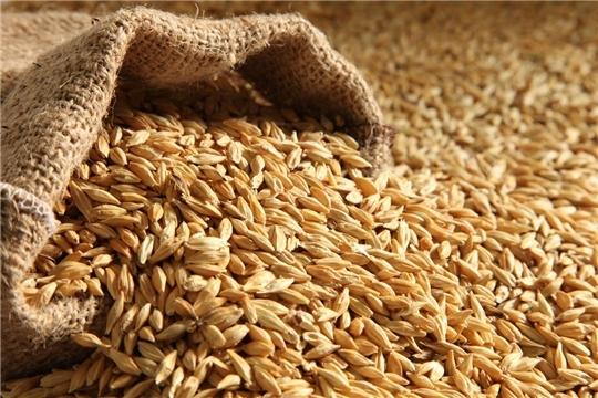 В хозяйствах республики идет подготовка семенного материала к весеннему севу