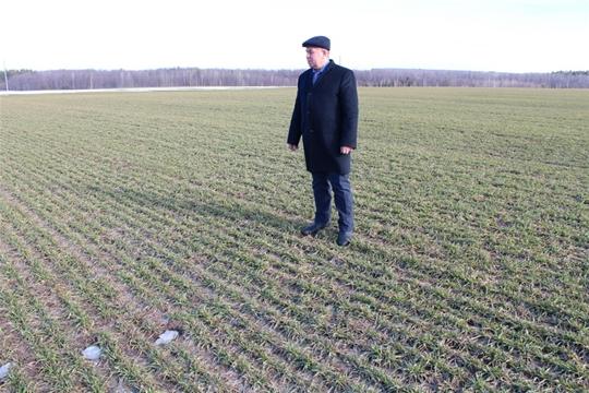 В Цивильском районе начался первый этап весенне-полевых работ — подкормка минеральными удобрениями озимых культур