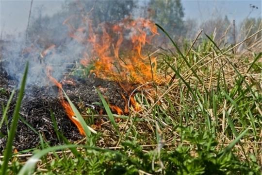 Горит трава - идет беда