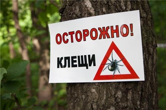 Осторожно – клещ!